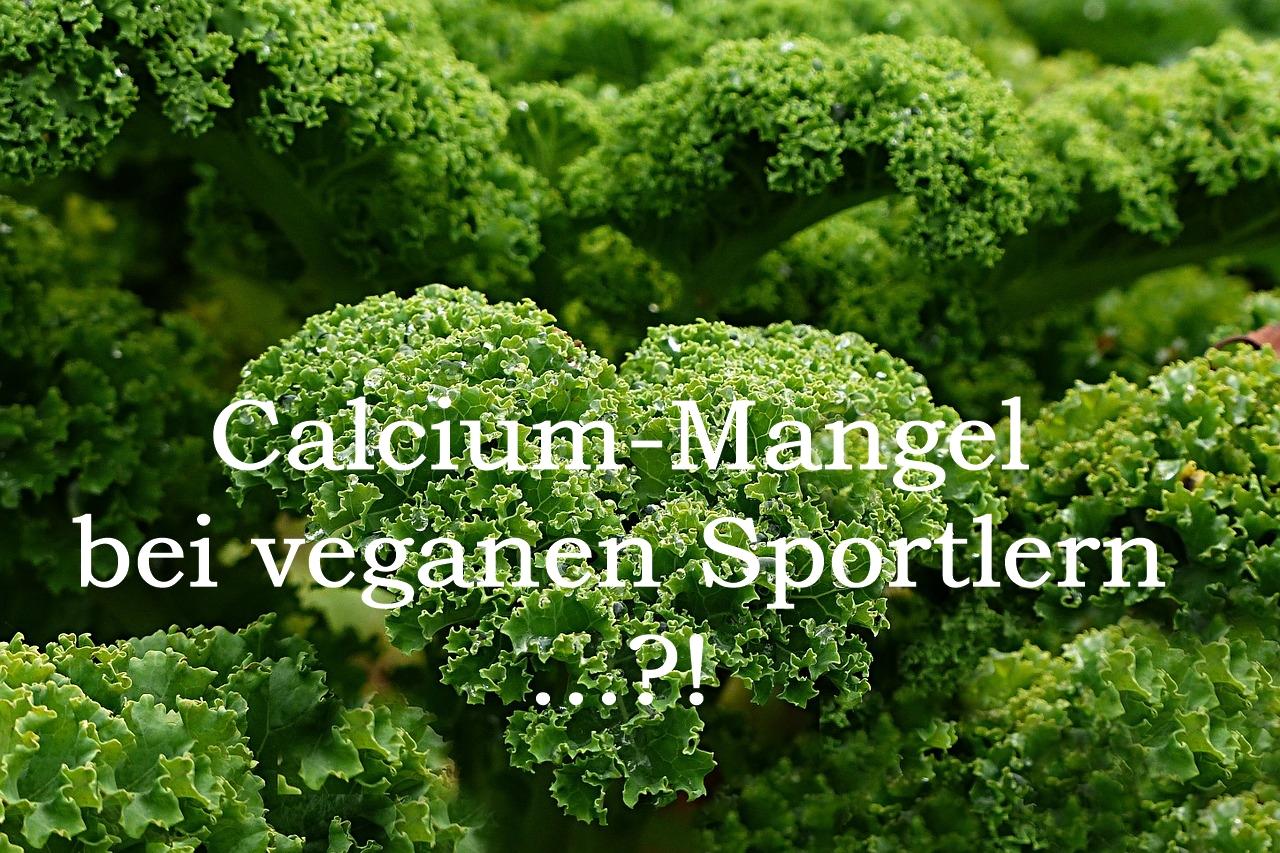 Grünkohl Calcium